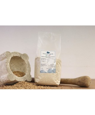 Whole Wheat Flour - stone ground