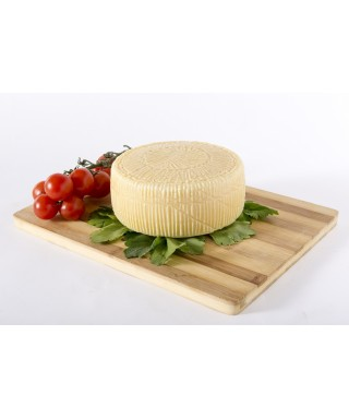 Goat milk mature 'Cacioricotta' cheese